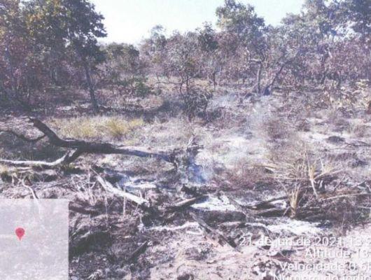 Fazendeiro é multado em R$ 10 milhões por queimada no Pantanal (Crédito: Reprodução)