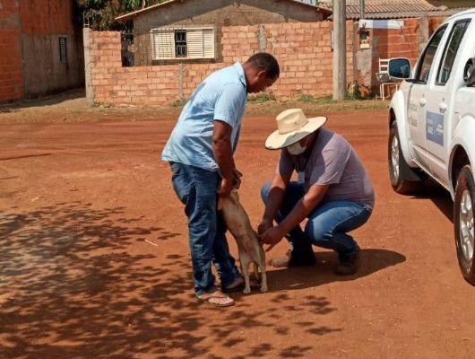 Chapada dos Guimarães lança campanha de vacinação de cães e gatos (Crédito: Ascom/Chapada dos Guimarães)
