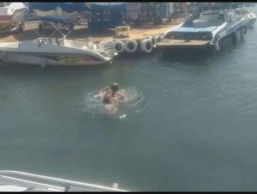 Homem é atacado por capivara e leva mordidas enquanto nadava em lago (Crédito: Reprodução)