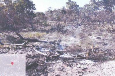 Fazendeiro é multado em R$ 10 milhões por queimada no Pantanal